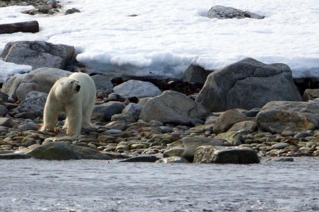 Stamp + Eef & Kieke: Spitsbergen