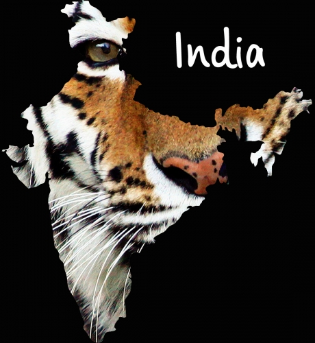Time to explore …. INDIA