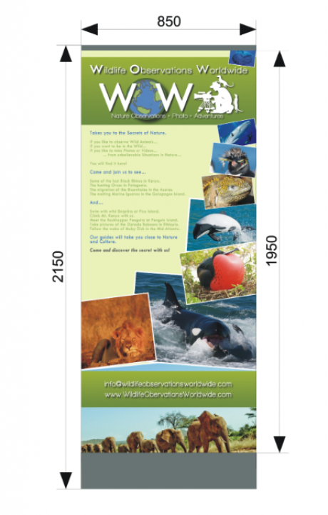 Banner for Shows @Wildlife Observations Worldwide